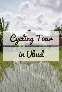Cycling Tour.jpg